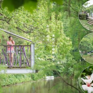 【新竹】十二寮大池休閒步道:傳說中的鄉野咖啡,隱身在綠意仙境! - 輕旅行