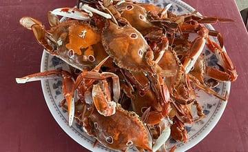 2021新北萬里蟹季!到野柳「活蟹市集」大啖螃蟹!現蒸現吃,享受鮮甜蟹肉的美好滋味